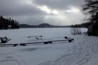 Lac traversé avec les chiens